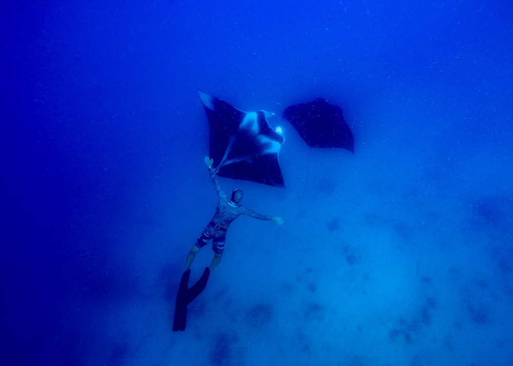 diving and freediving courses Fiji. SSI Level 2 freediving dive course.