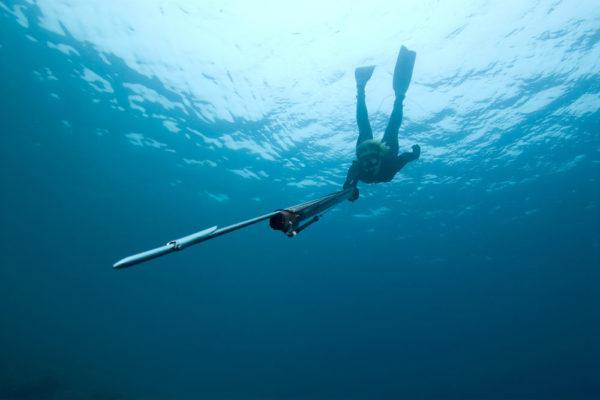 fiji-charter-spearfishing-deep-freedive